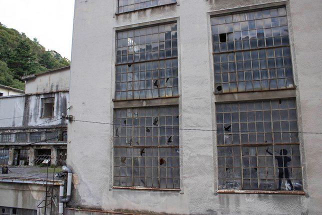 bird-windows-power-plant