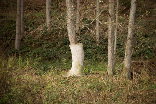 boot-on-tree