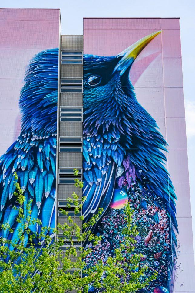 interactive-street-art-starling-2