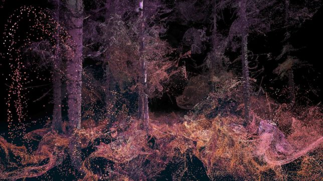 virtual-reality-forest-7