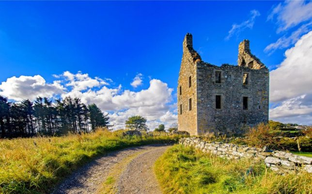 castles-for-sale-knockhall-4