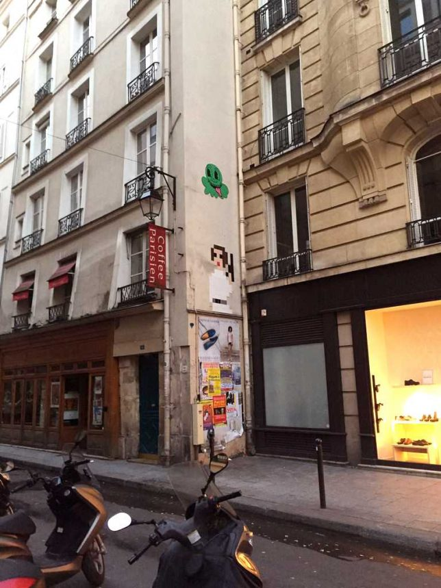 leia-street-art-1b