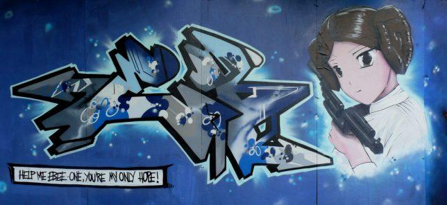 leia-street-art-7a