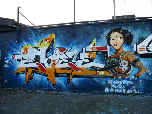 leia-street-art-7c