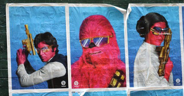 leia-street-art-9a
