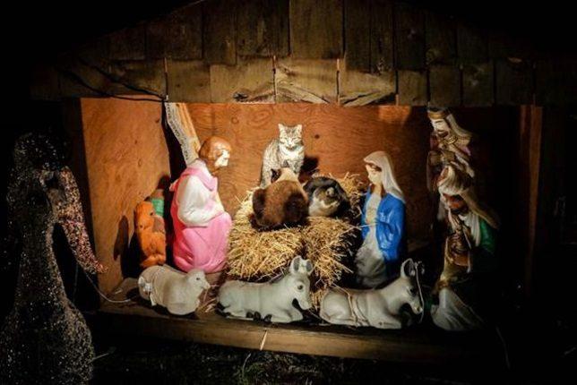 nativity-scene-3a