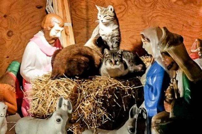 nativity-scene-3b
