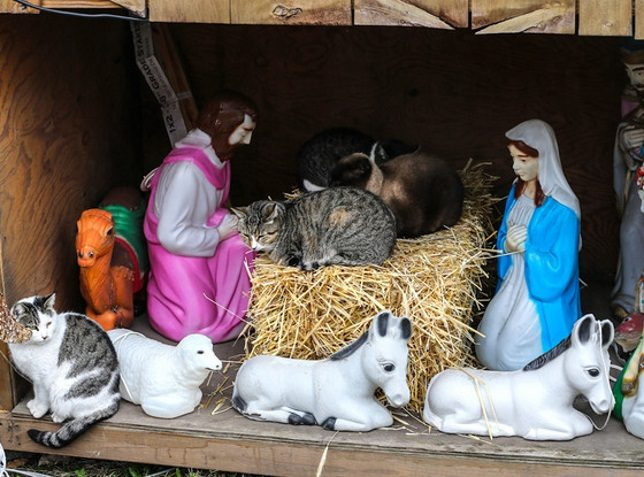 nativity-scene-3c