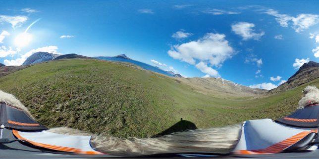 sheep-view-panoramic