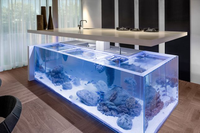 aquarium-kitchen-2