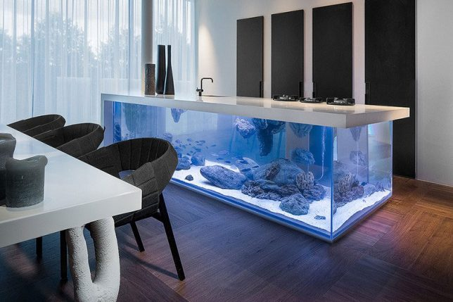 aquarium-kitchen