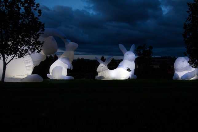 glow-in-the-dark-giant-rabbits