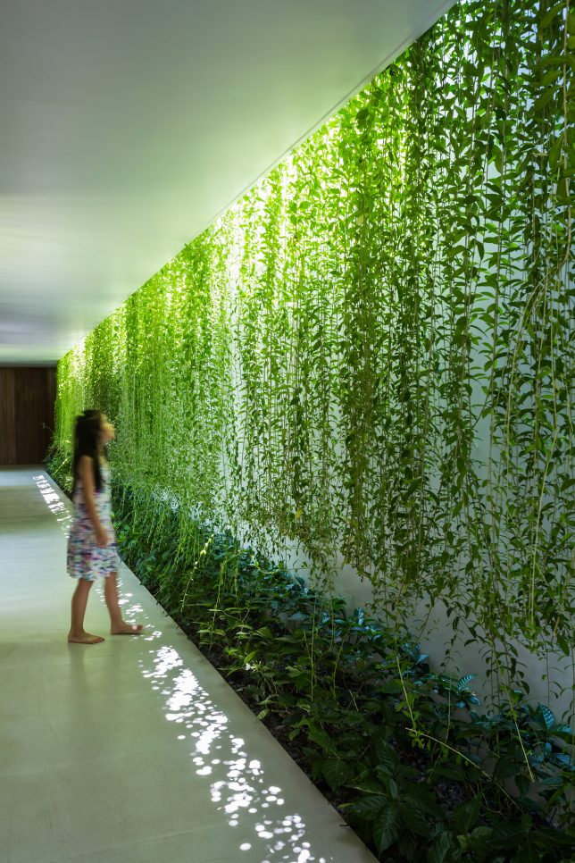green-wall-interior