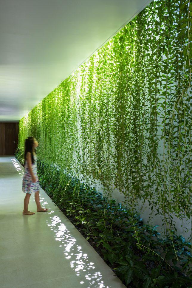 green-wall-interior