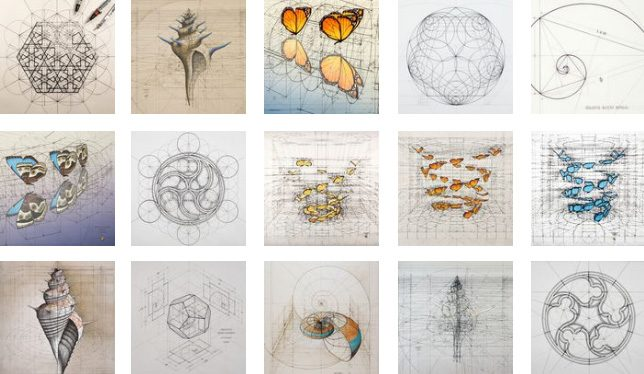 Golden Ratio In Action Coloring Book Amp Animations Of