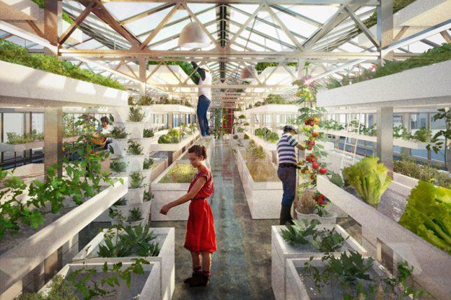 industrial rooftop gardens 2