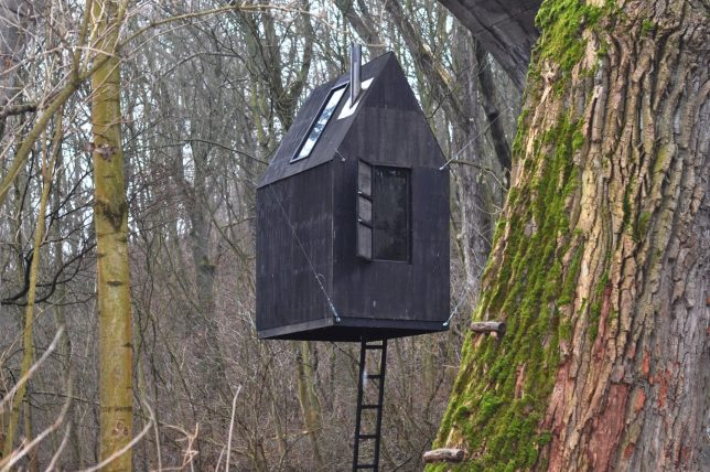 black flying house 4
