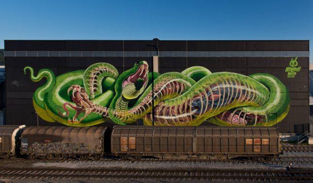 sliced snake
