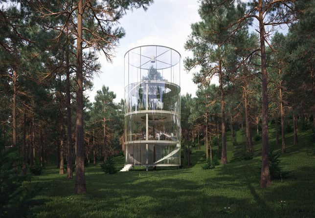 transparent tree house