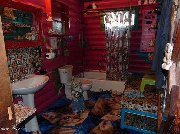 Crazy Cat Castle For Sale 20 Acres Of Terror In The