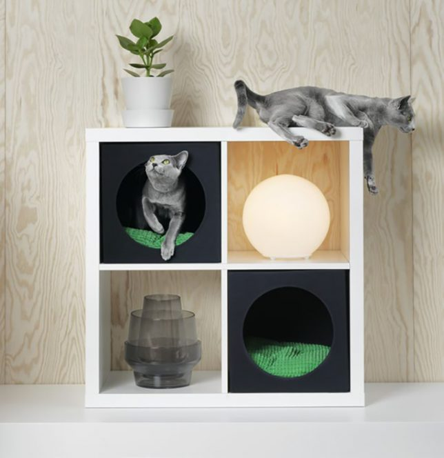 LURVIG for Pets: IKEA Debuts its First Line of Animal