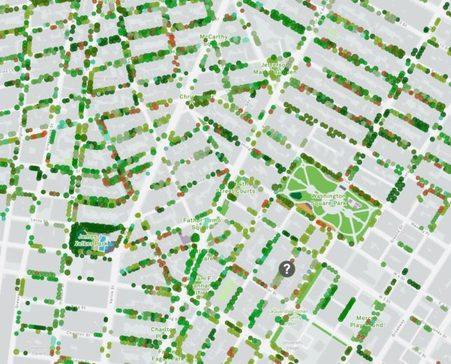 Urban Forestry: Explore 678,632 Street Trees of NYC with Interactive Map